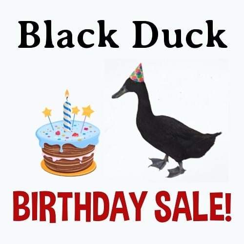 Black Duck Entertainment